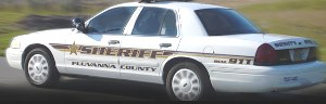 Two Juveniles Charged With Fluvanna Larcenies