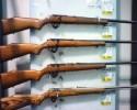 Gun Display Sample Picture