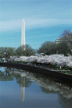 Illuminated Scaffolding On Washington Monument Will Go Soon