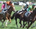 Foxfield Races Horses 042509