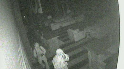 Nelson Needs Help Identifying Burglary Suspects
