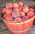 Frost Hurt Local Peach and Apple Crops