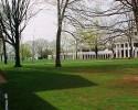 UVA Lawn (RG)