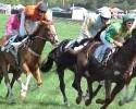 Foxfield Races Horses 042509 (RG)